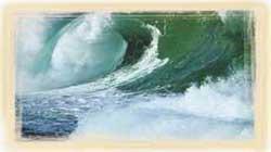 Kuran'ı Kerim'deki bilimsel mucizeler...Aşılayıcı rüzgarlar